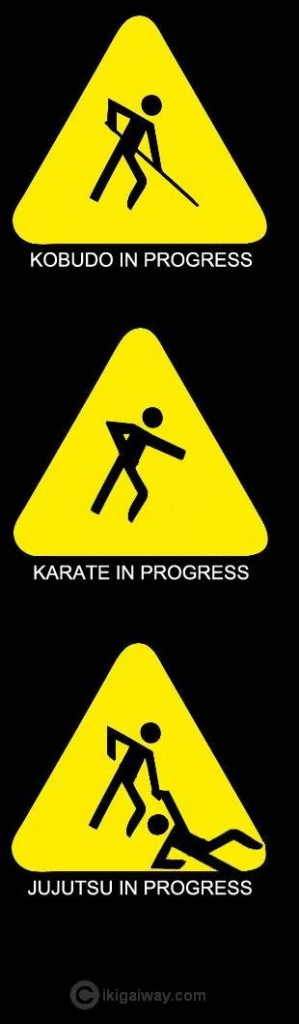 martial arts in progress 
