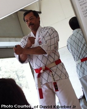 bill hayes shorin ryu karate
