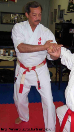 bill hayes karate tuite