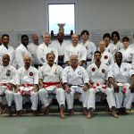 Shobayashi Ryu seminar with Bill Hayes 2014