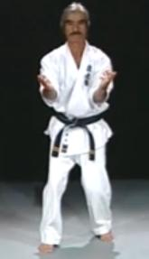 shinyu gushi seisan