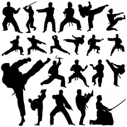martial arts poses