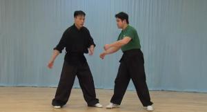 shaolin kung fu yang