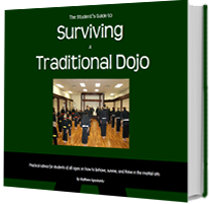 surviving a traditional dojo