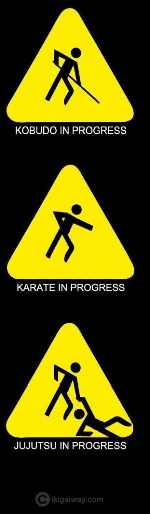 martial arts in progress