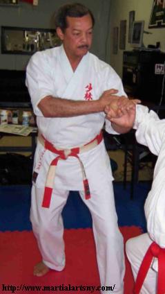 bill hayes karate tuite