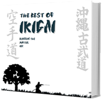 New 'Best of Ikigai' Ebook (With Bonus Articles)
